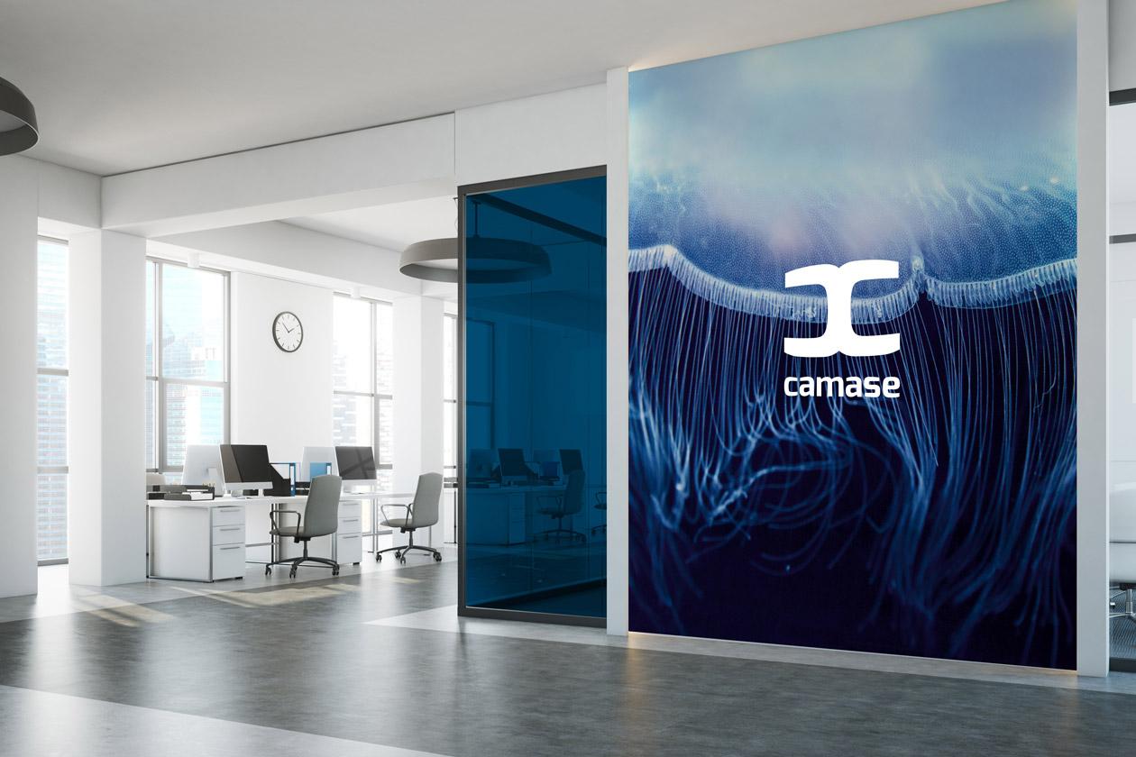 logo branding camase 06