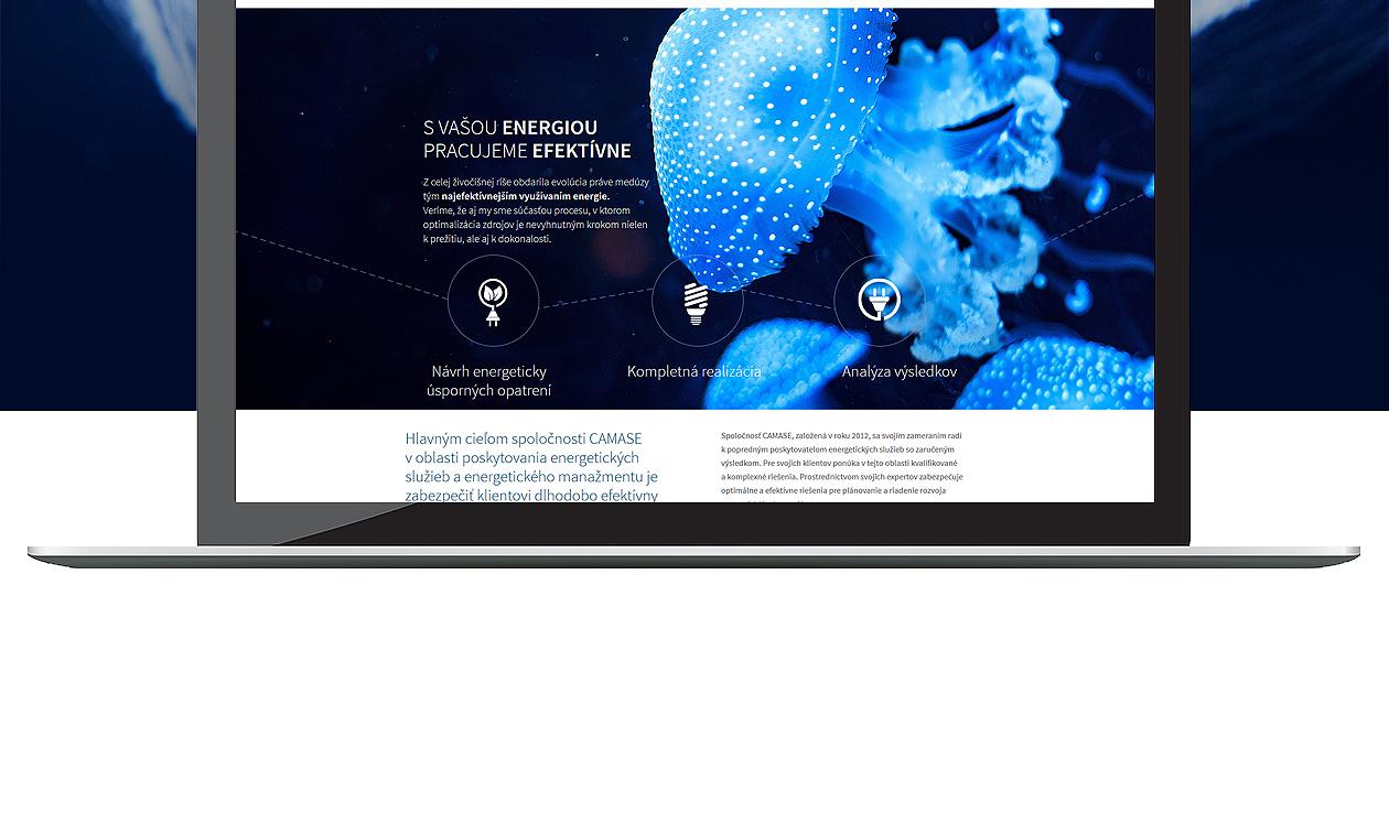 logo-design-branding-webdesign-camase-02