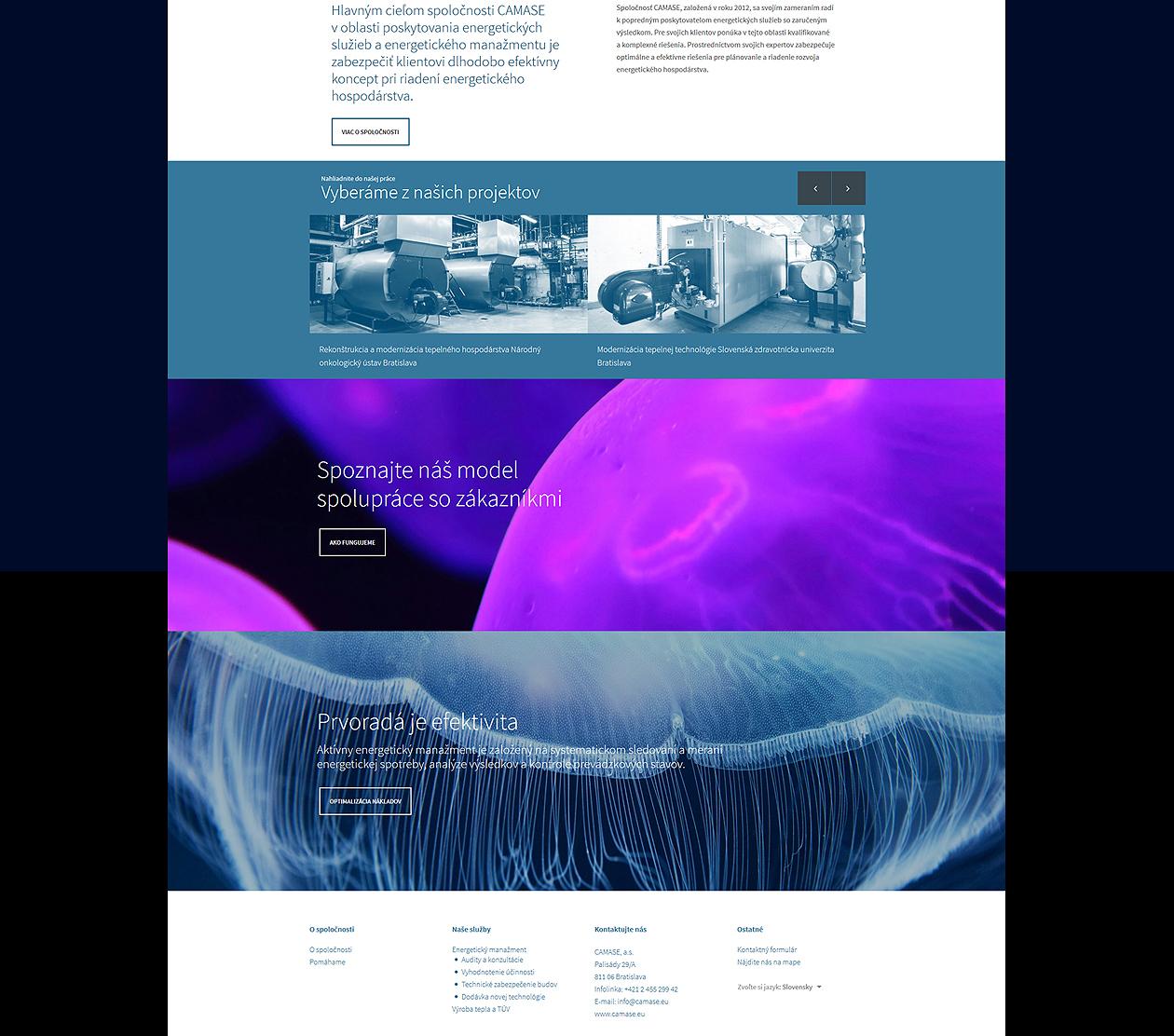 logo-design-branding-webdesign-camase-04