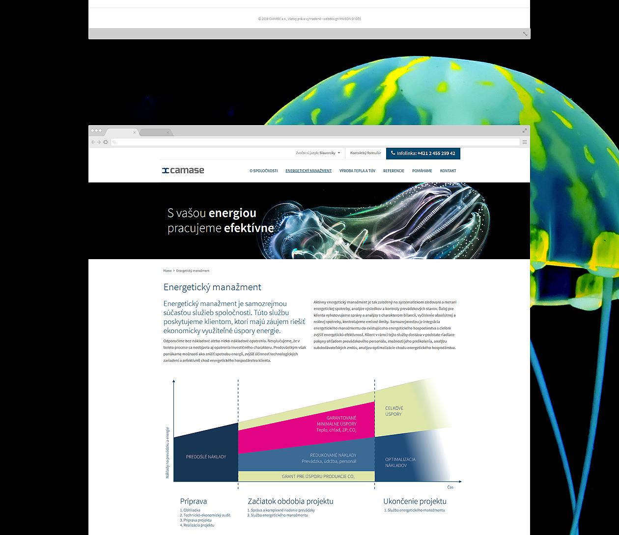 logo-design-branding-webdesign-camase-05