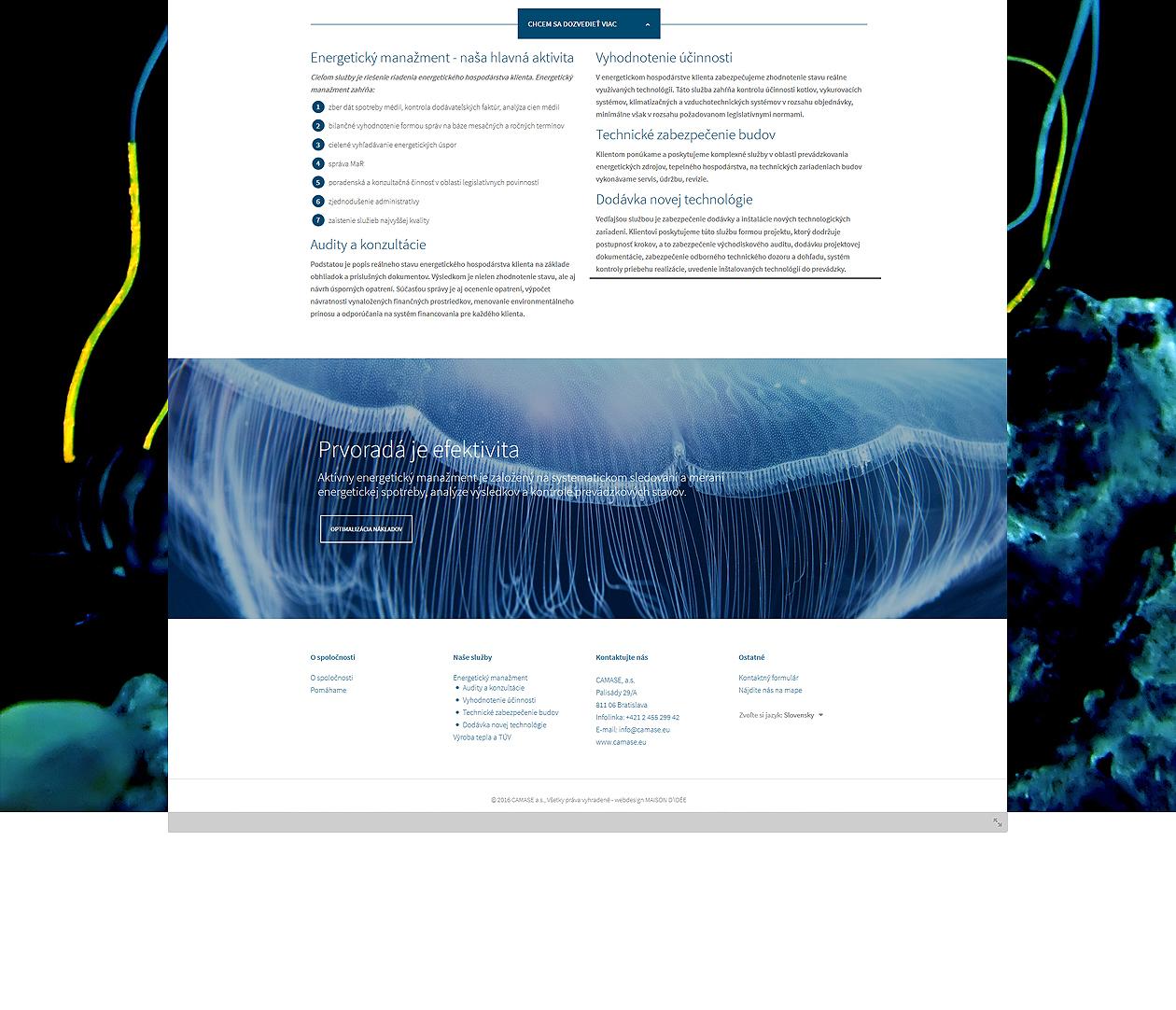 logo-design-branding-webdesign-camase-06