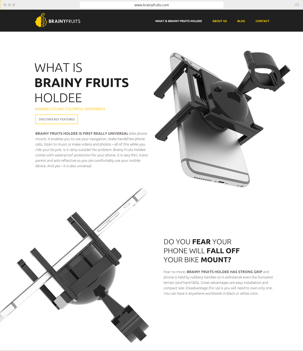webdesign Brainy Fruits
