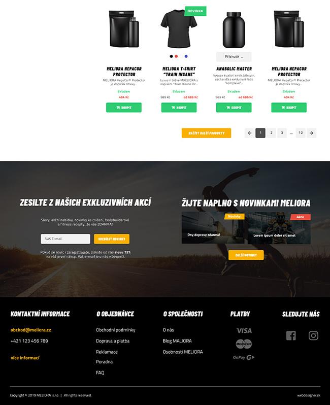 webdesign MELIORA